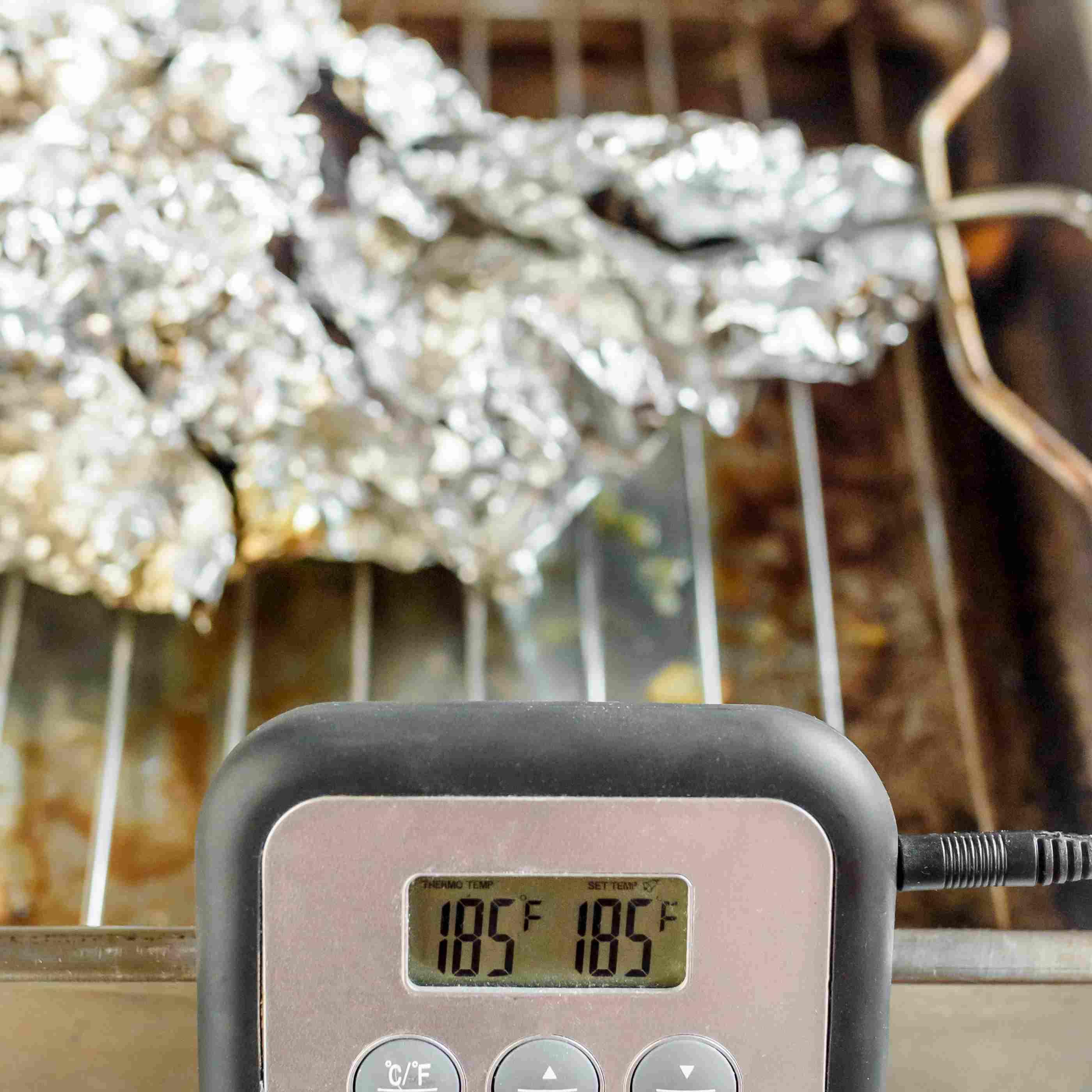 check meat temperature