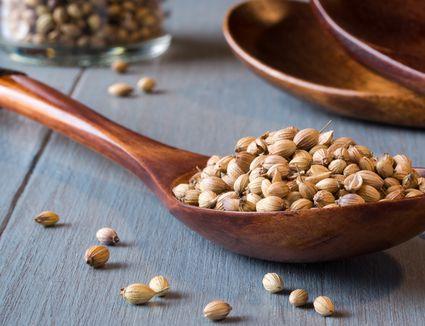 Close-up of coriander seeds