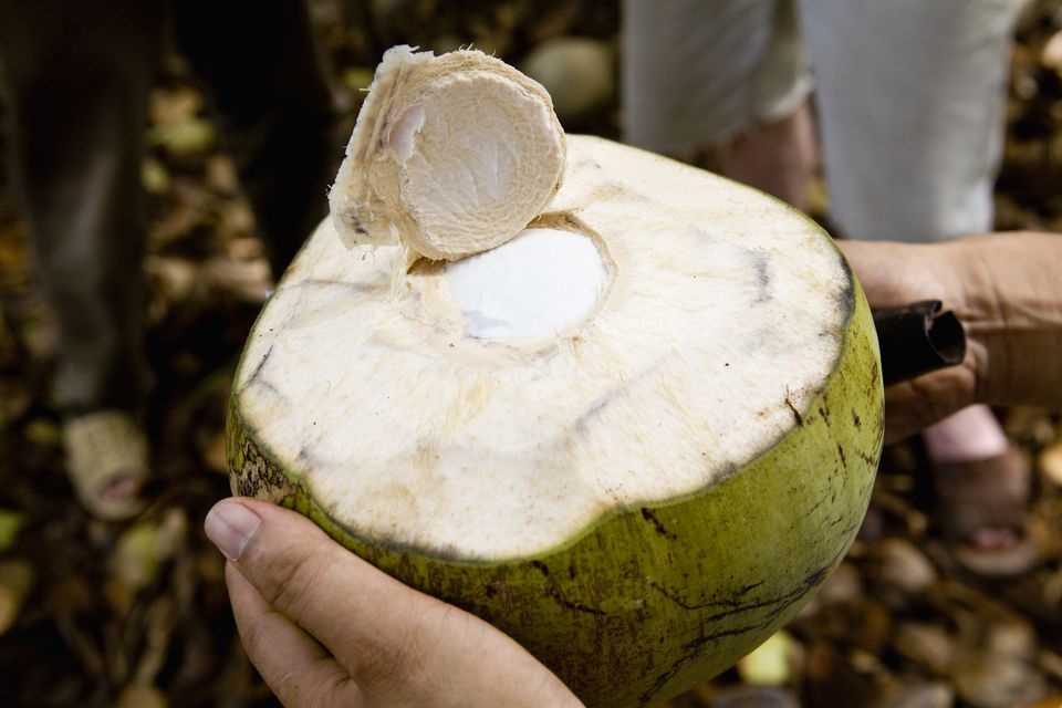 how to cut open a green coconut