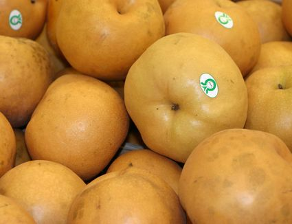 A cluster of bae pears
