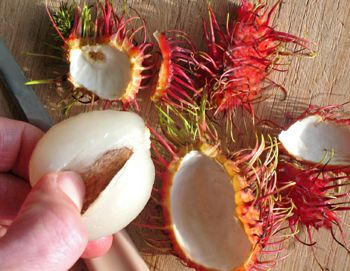 Removing the seeds of a rambutan