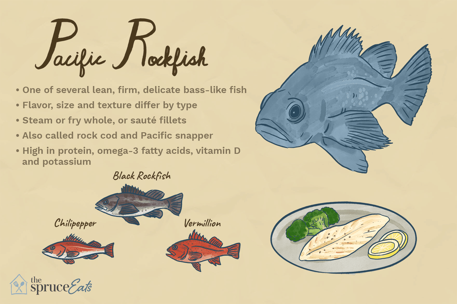 What Is Pacific Rockfish and How Is It Used?