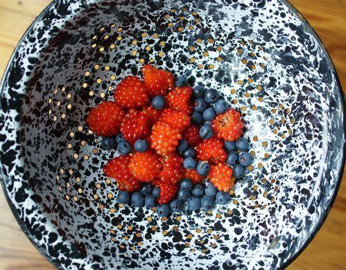 Salmonberries and Blueberries