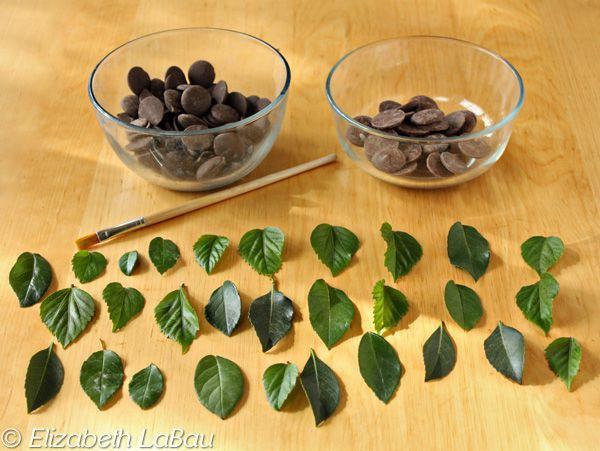 Chocolate Leaves Ingredients