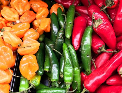 Mixed chiles in a pile.
