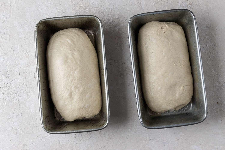 dough in loaf pans