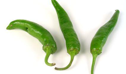 sport pepper