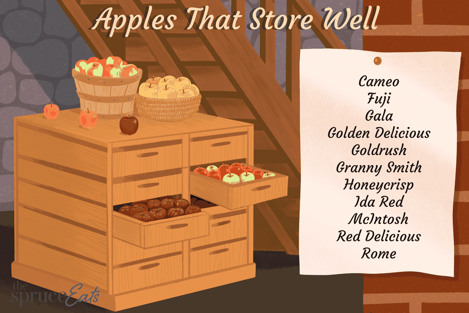 Apples that Store Well