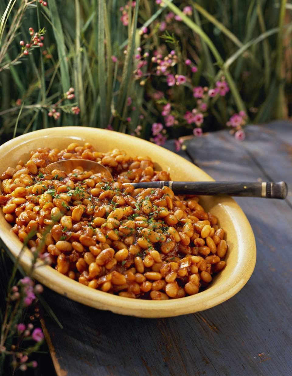 Crockpot BBQ Pinto Beans