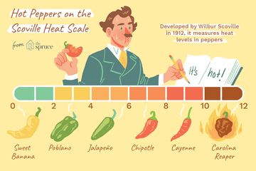 hot peppers on the scoville heat scale illustration