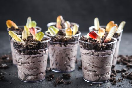 Individual Pudding Dirt Cups