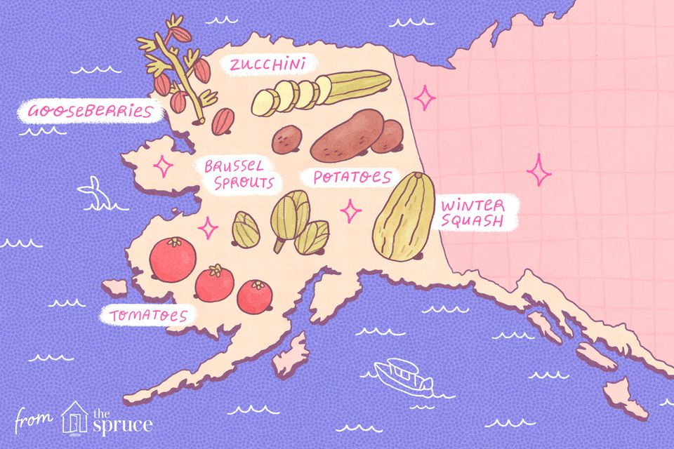 seasonal fruits and vegetables of alaska