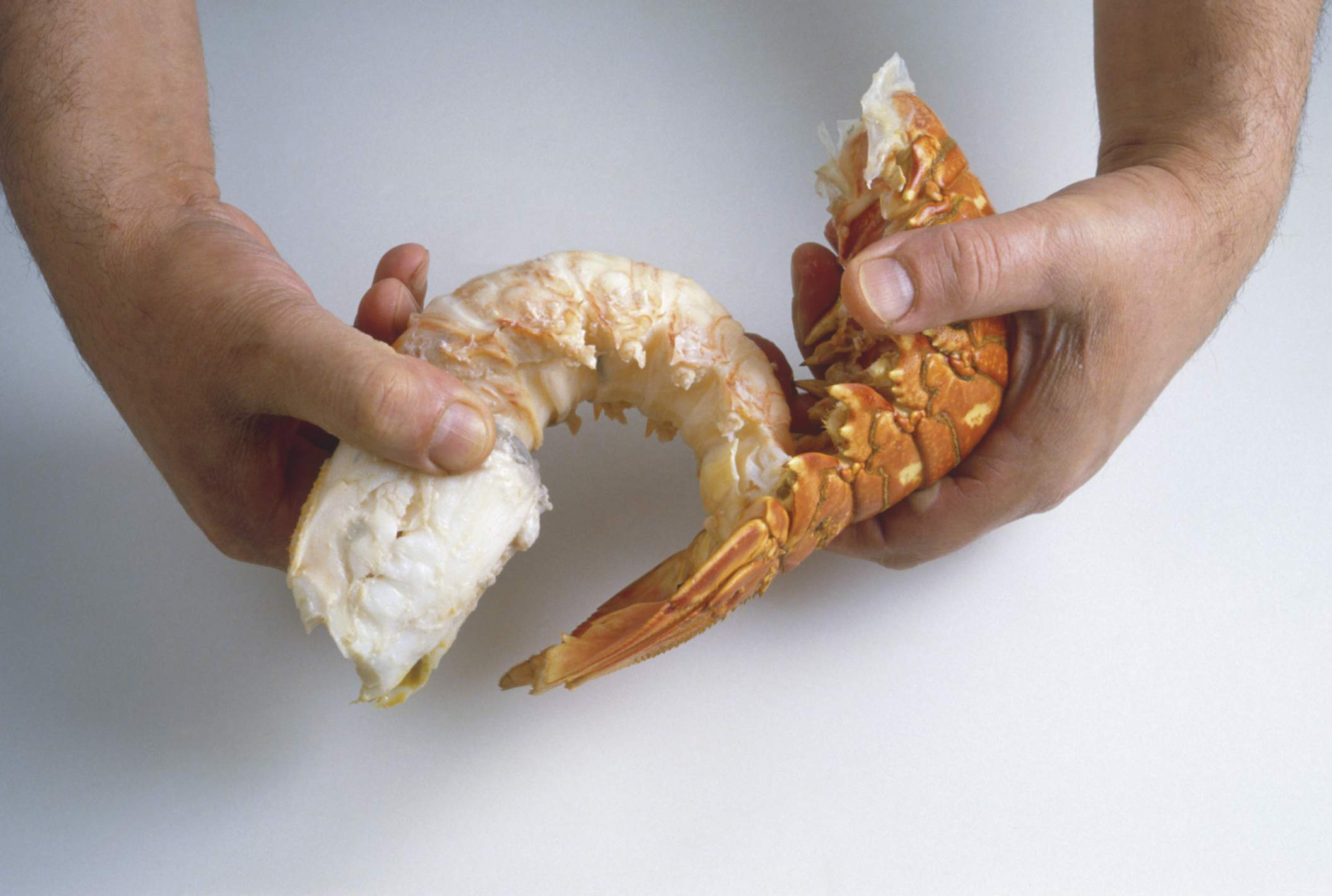 Pulling Lobster Tail Meat from Its Shell
