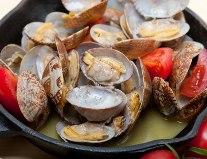Clams in a cooking pan