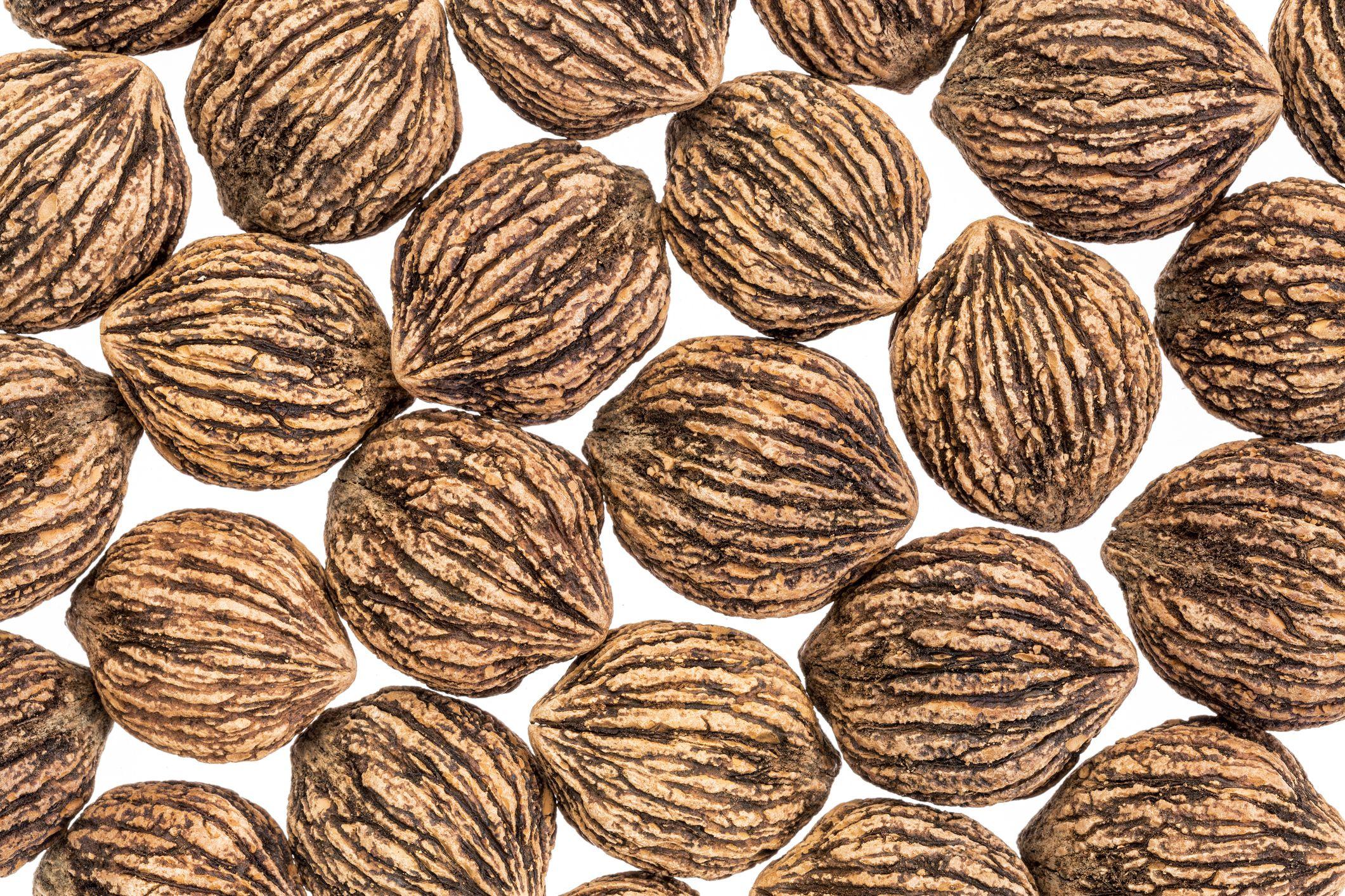 Cured Black Walnuts