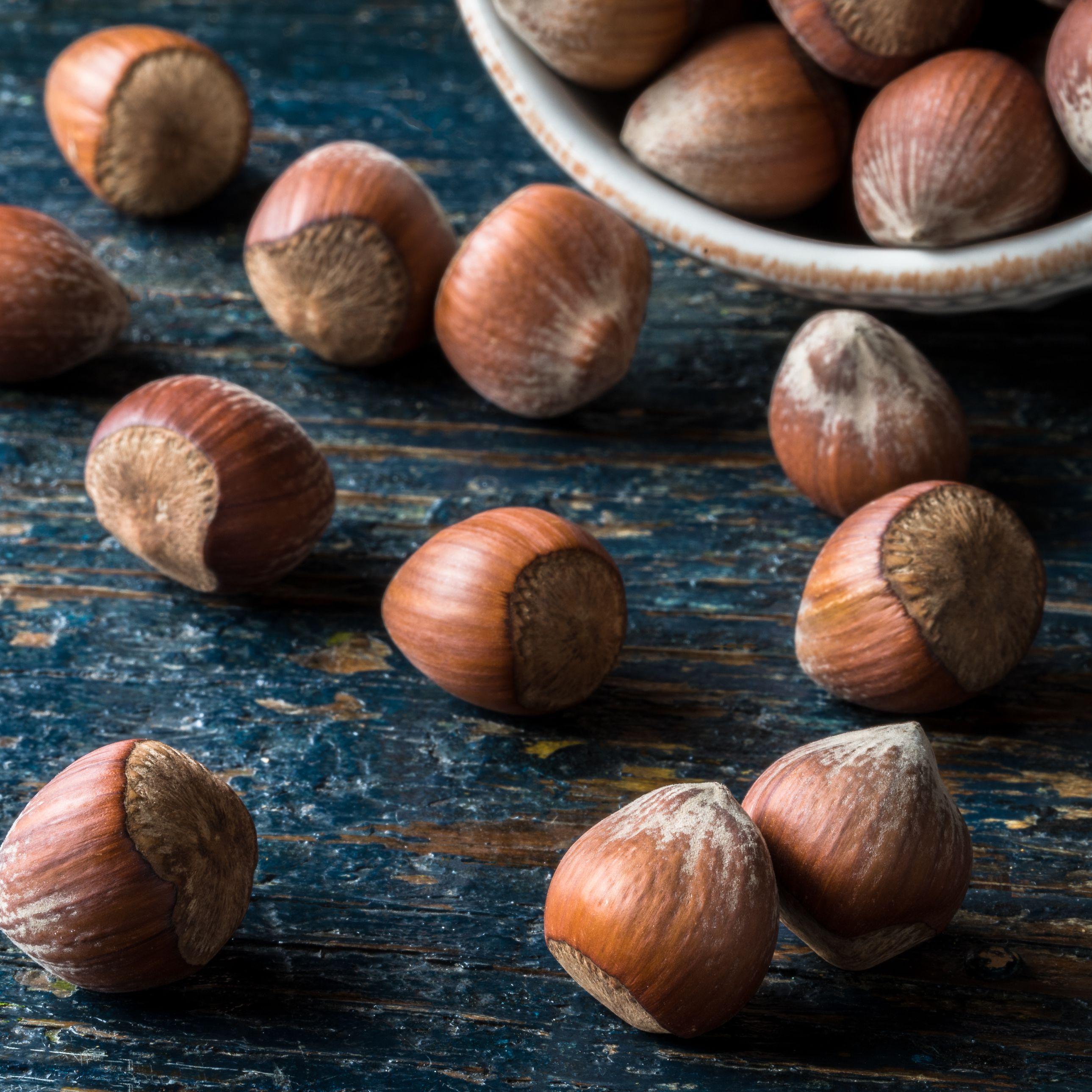 Learn About Hazelnuts (Haselnuesse) in German Cooking