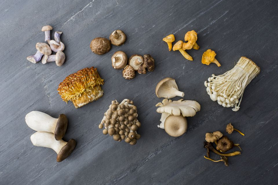 A variety of mushrooms