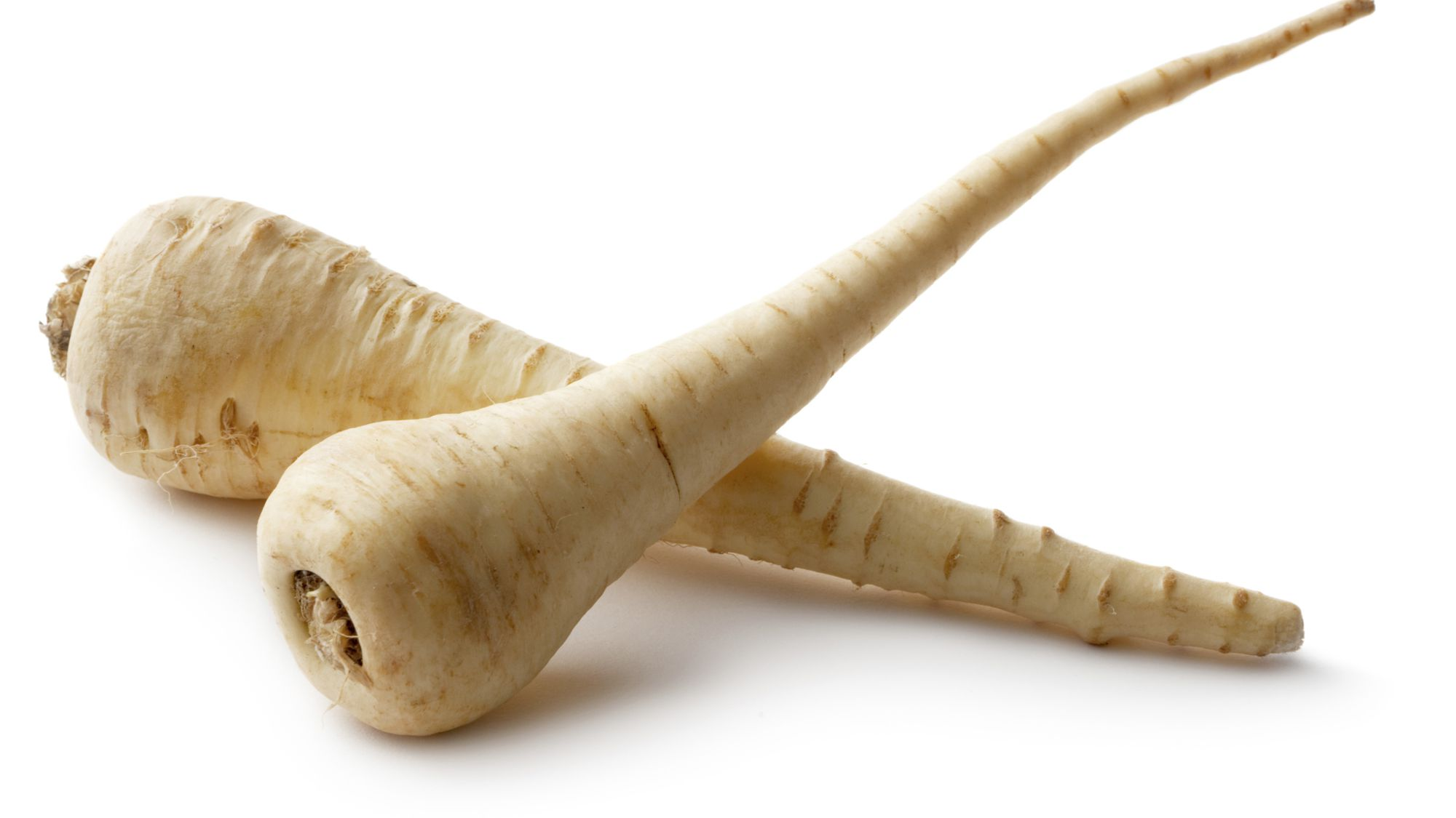 Parsnip picture