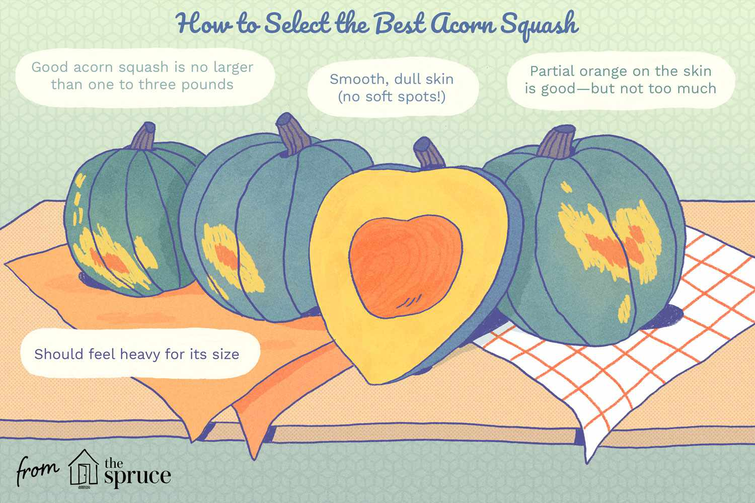 how to select the best acorn squash