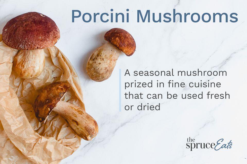 Porcini Mushrooms Annotated