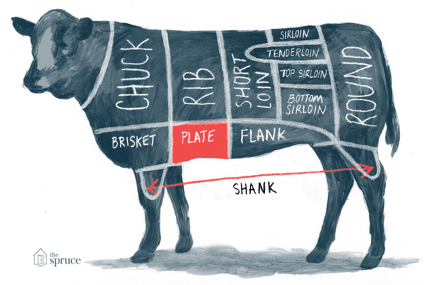Illustration of plate beef cut