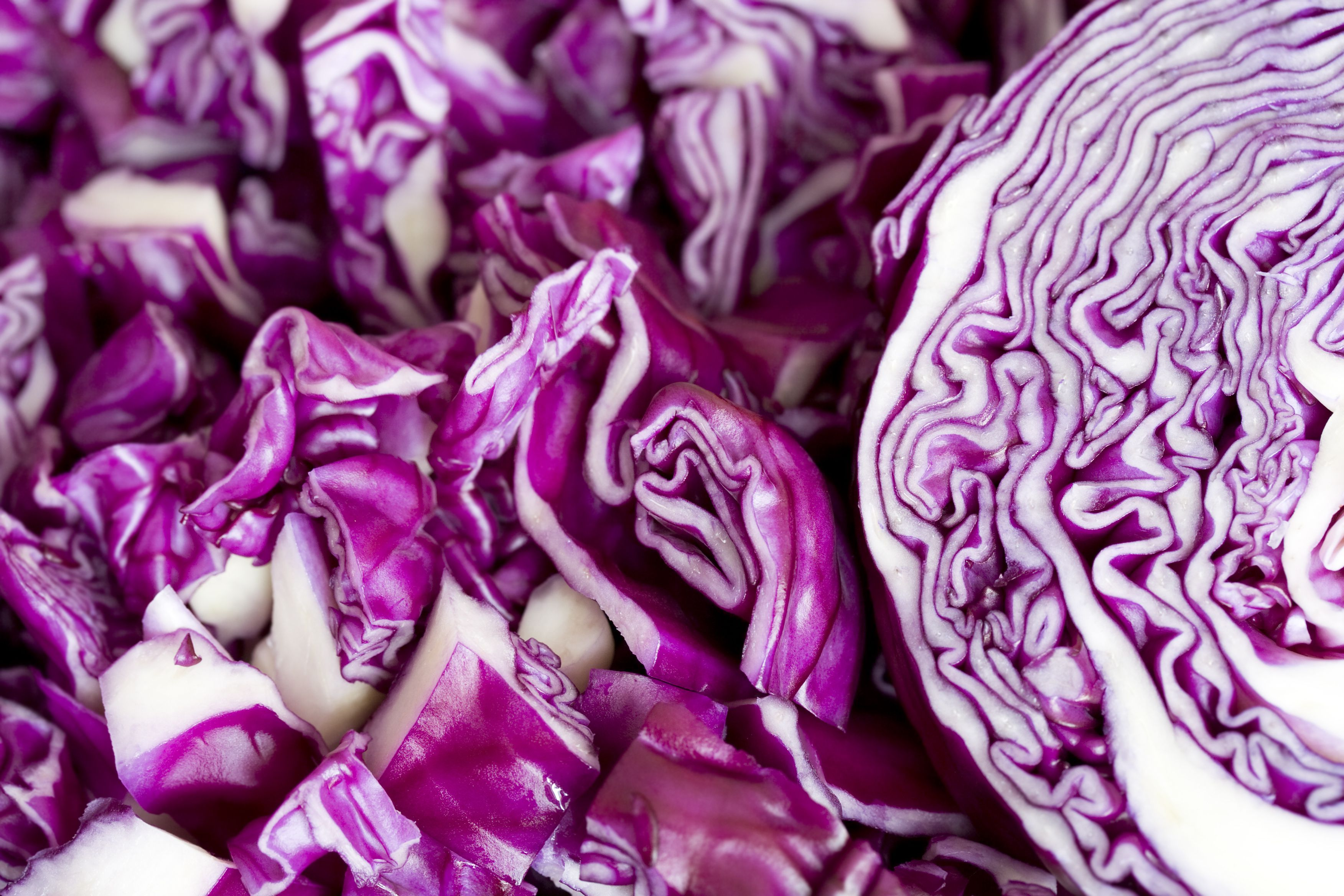 Chopped red cabbage in a close-up view