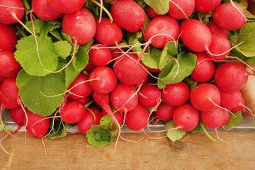 Red radishes