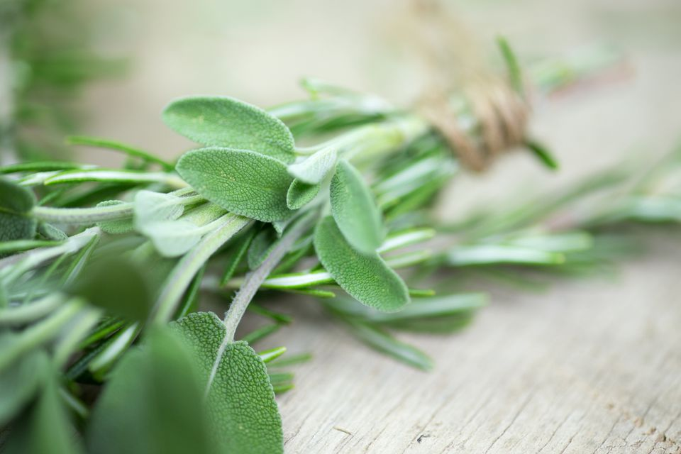 A bundle of fresh sage