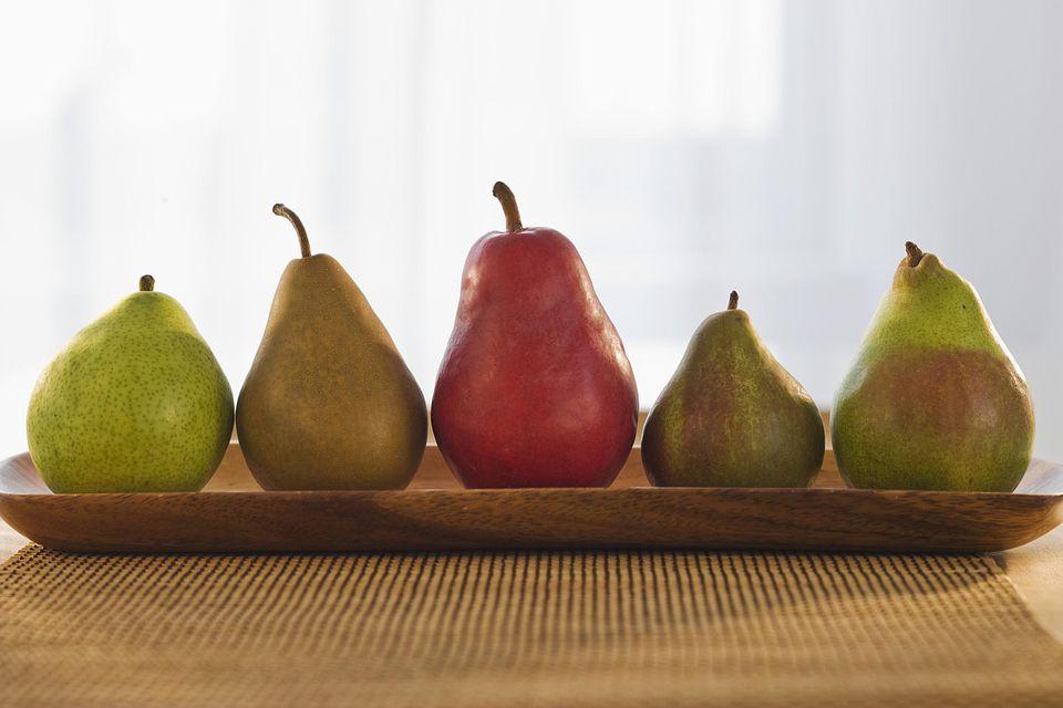 pear varieties