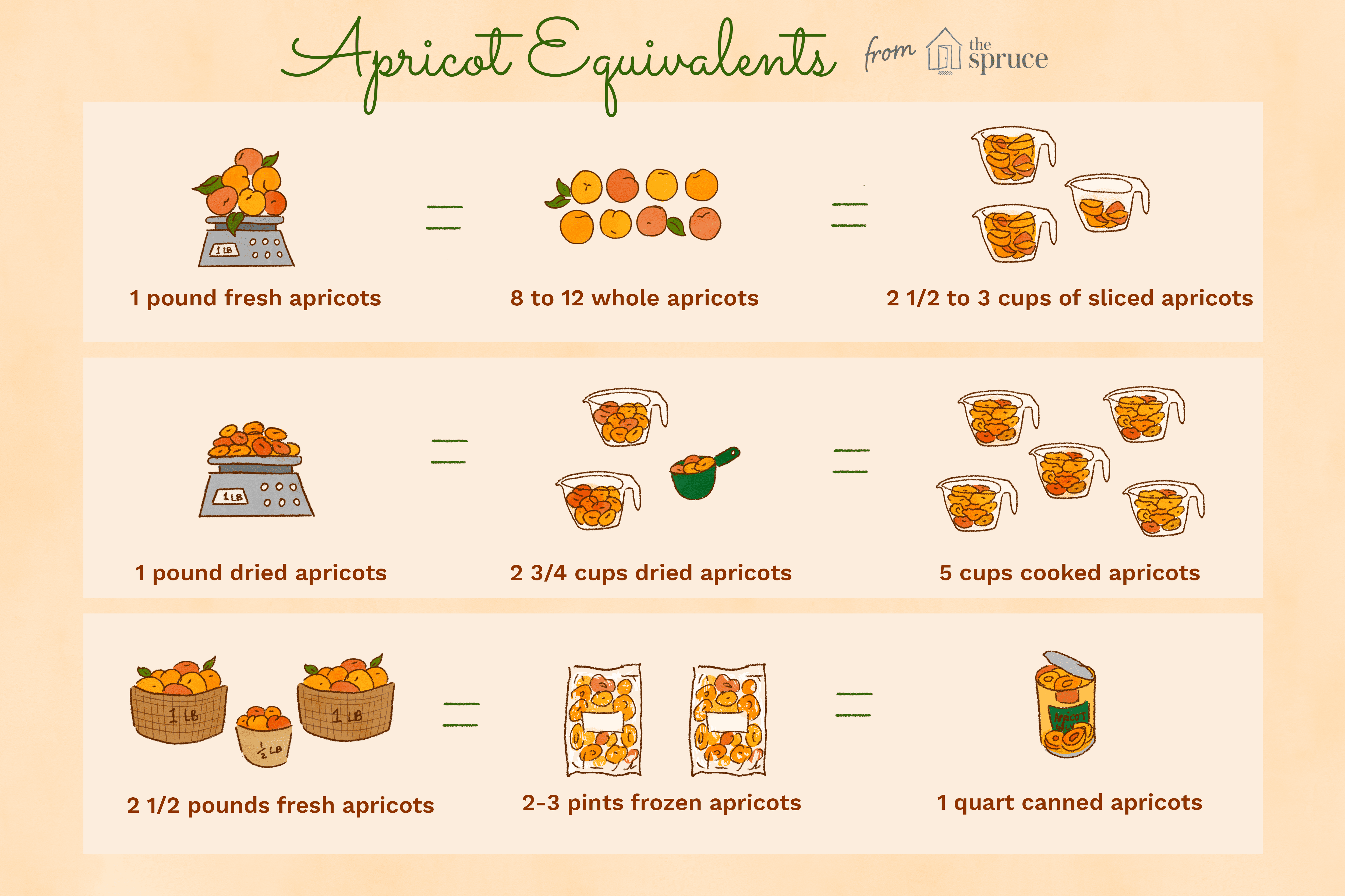 illustration that shows apricot equivalents