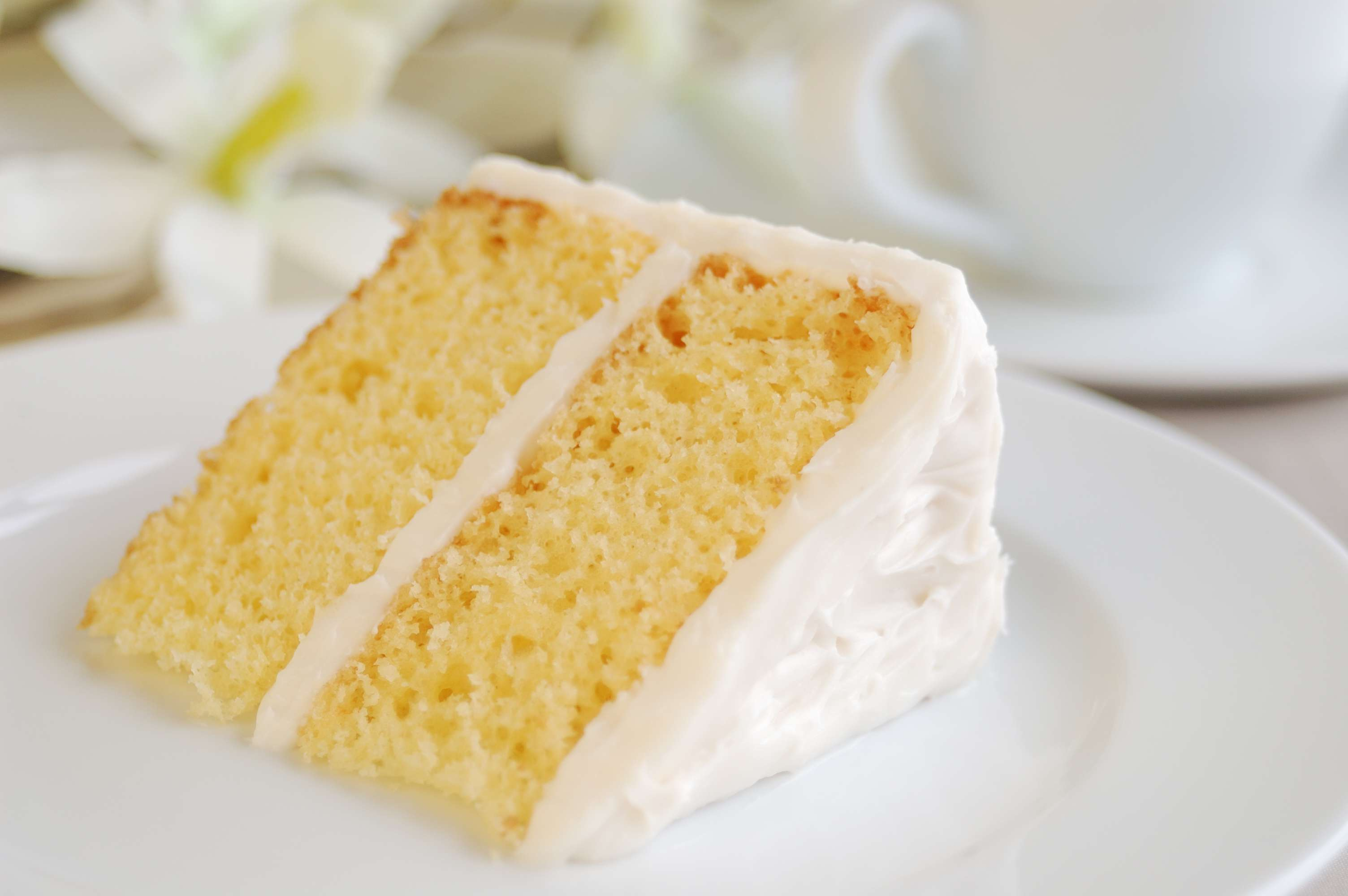 Dairy Free Cake Recipe Collection