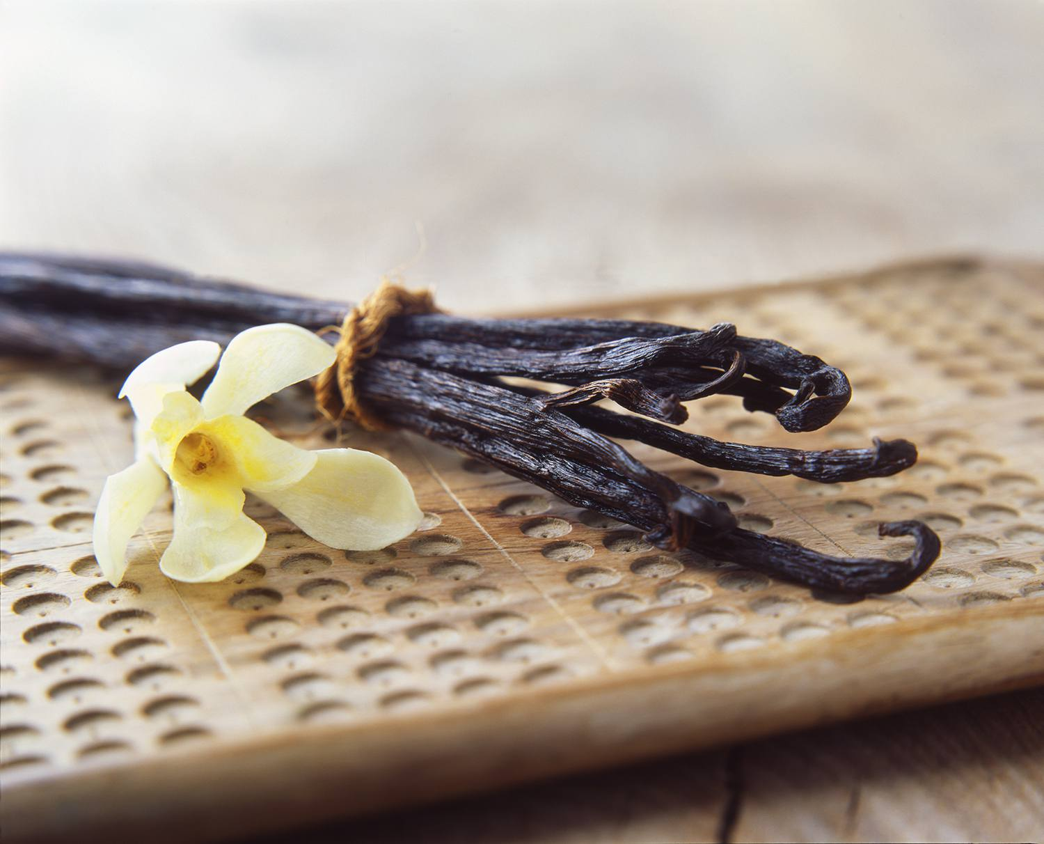 Vanilla pods and yellow flower on wooden board