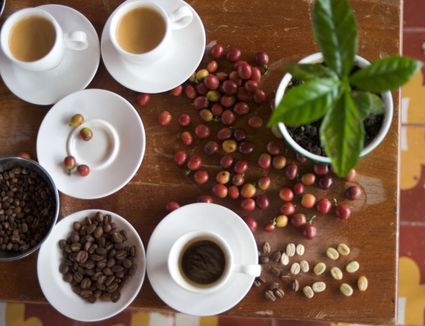 Coffee in all its stages on table