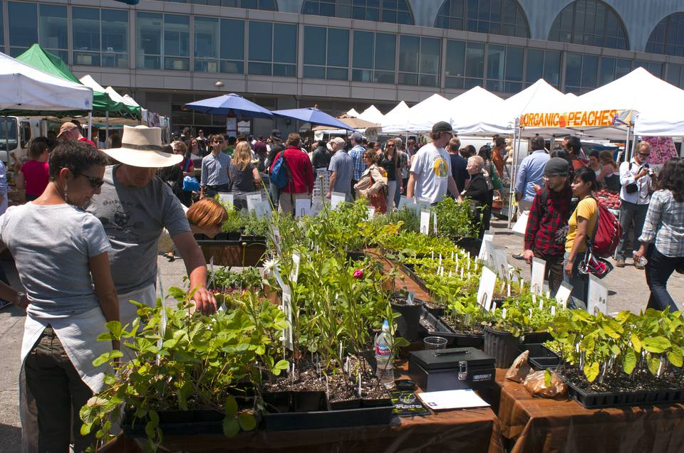 San Francisco Farmers Market