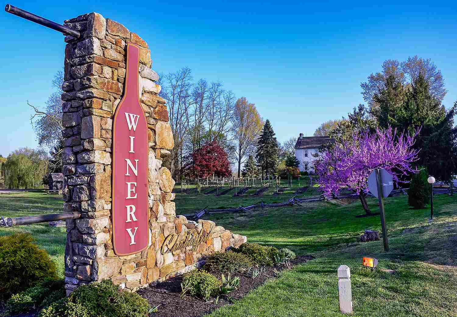 Chadds Ford Winery in Pennsylvania