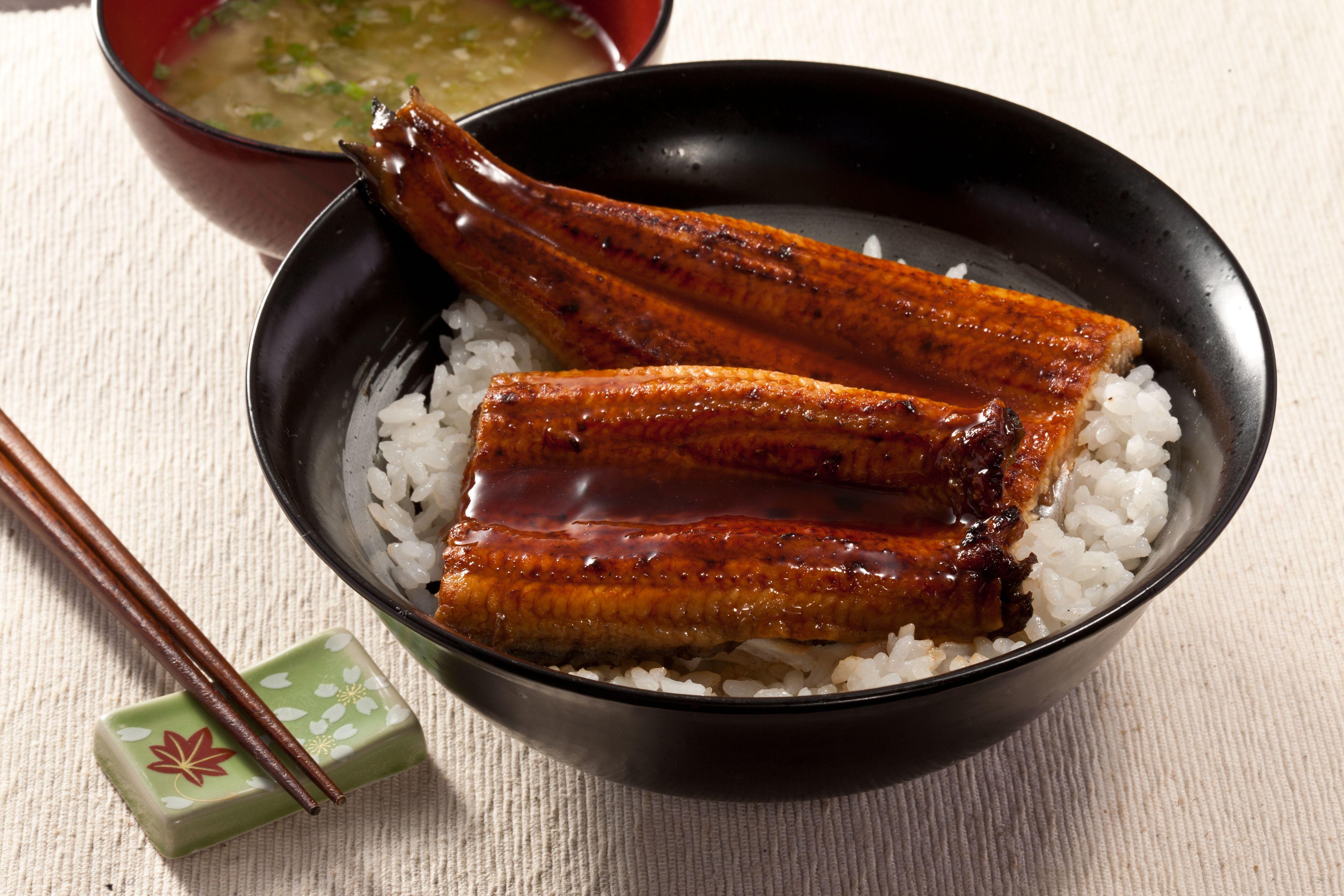 Japanese Broiled Unagi Eel With Rice