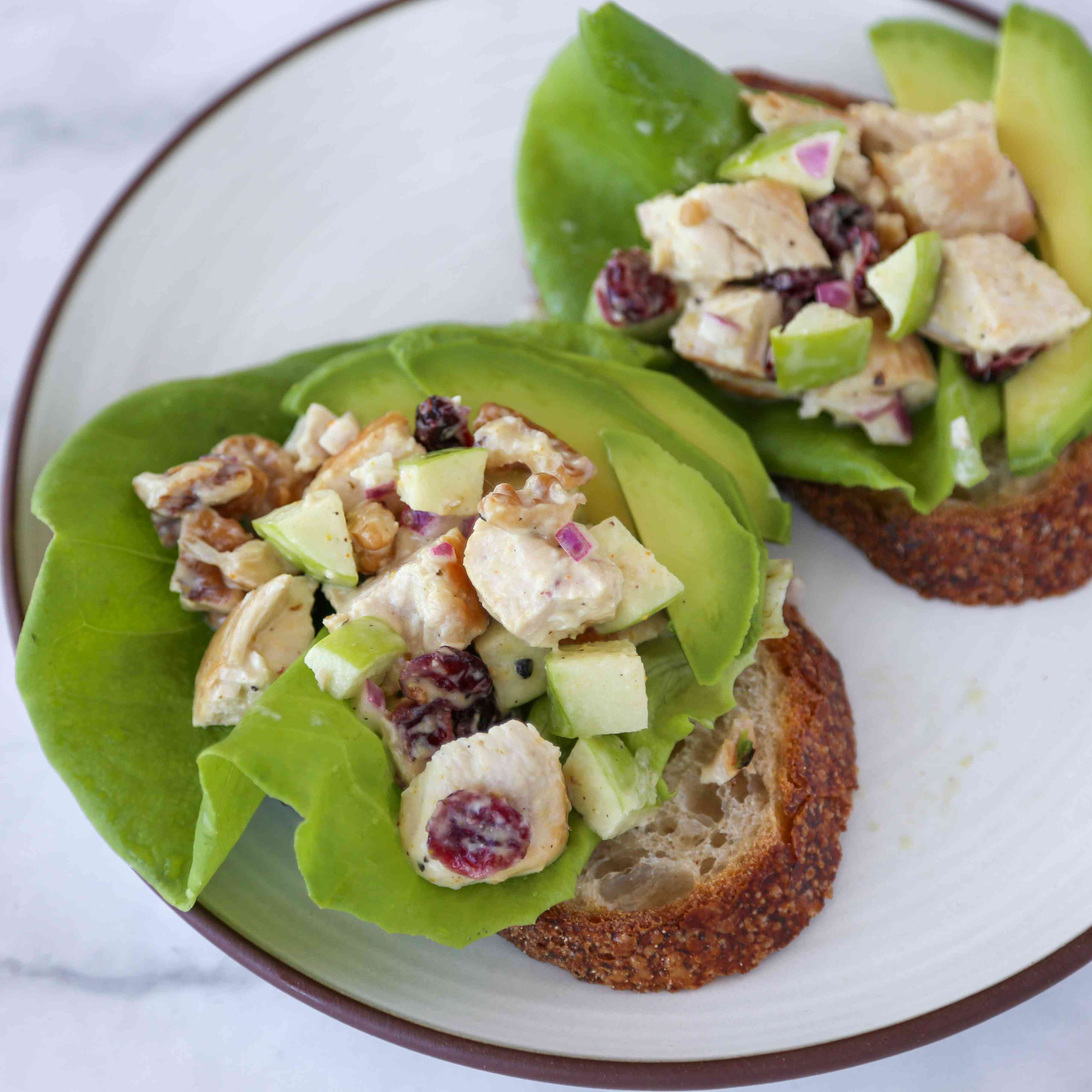 Chicken Salad with Apples and Cranberries Tester Image