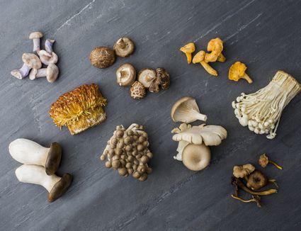 variety of mushrooms on gray surface