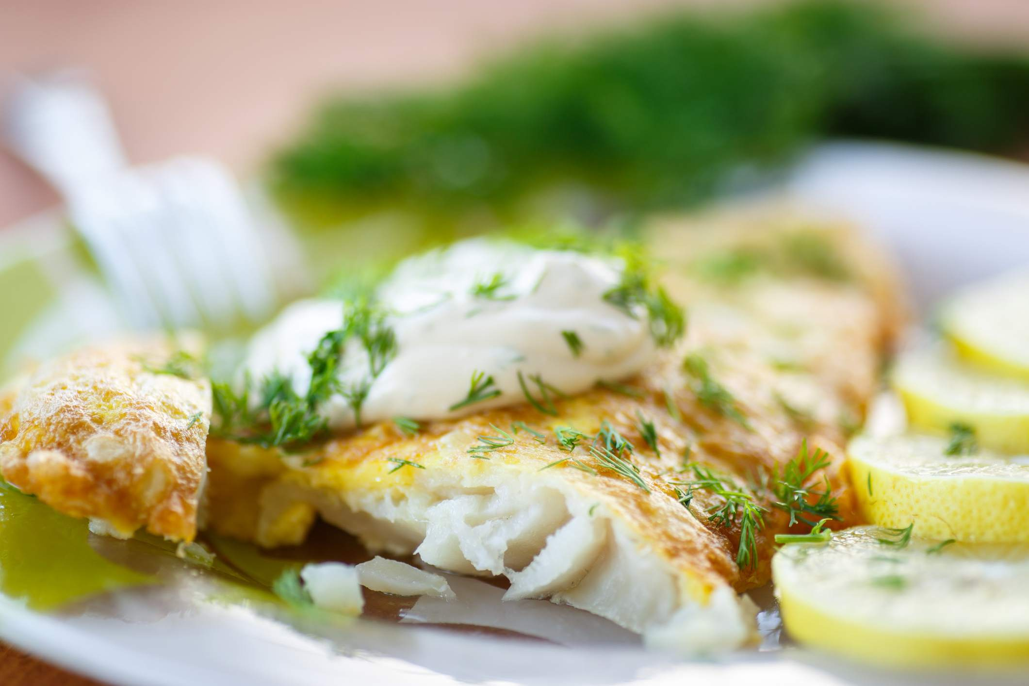 Spicy Grilled Tilapia With Aioli
