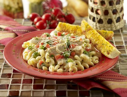 Alfredo macaroni