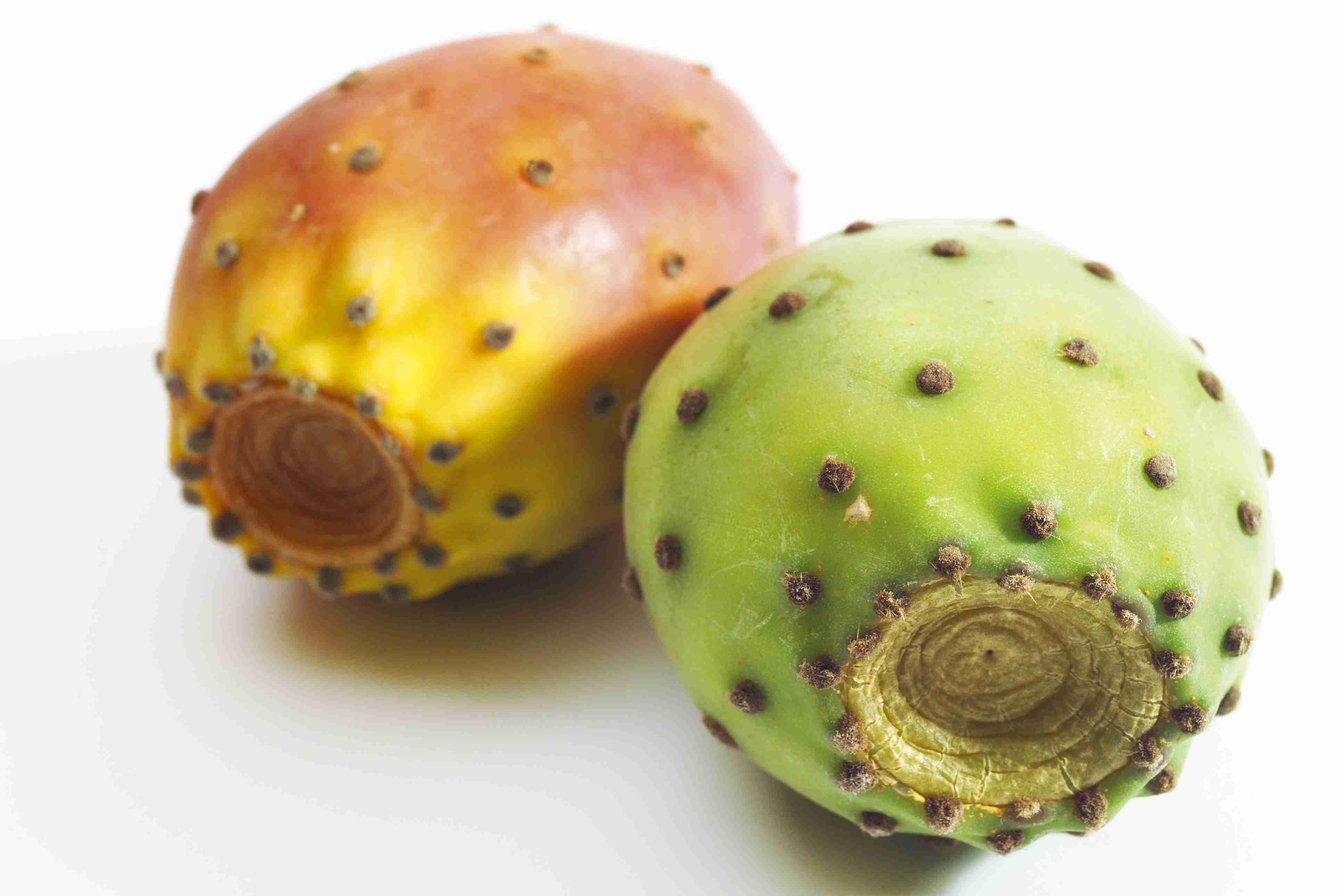 prickly pear (sabra) syrup recipe