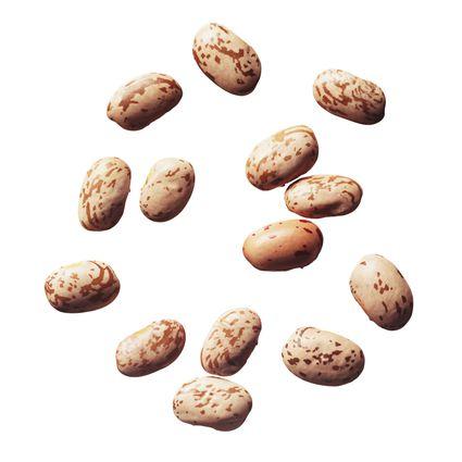 Borlotti Beans (cranberry beans)