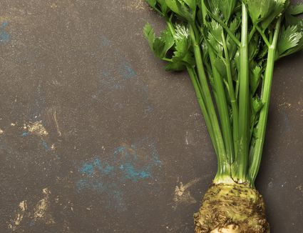 Root celery with green stems, dark background, top view