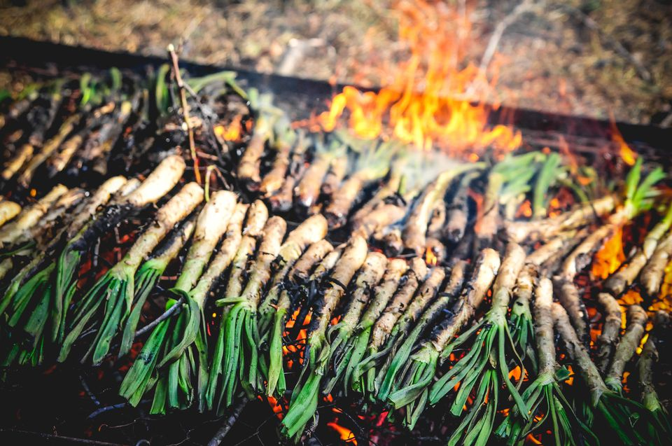 Grilled Calcots