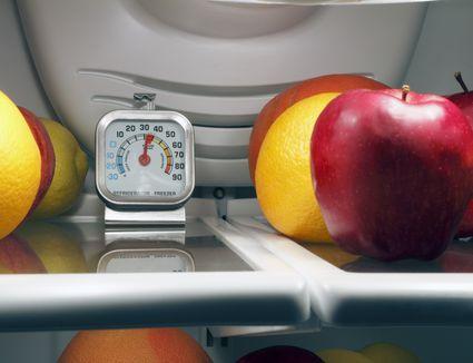 fridge-thermometers