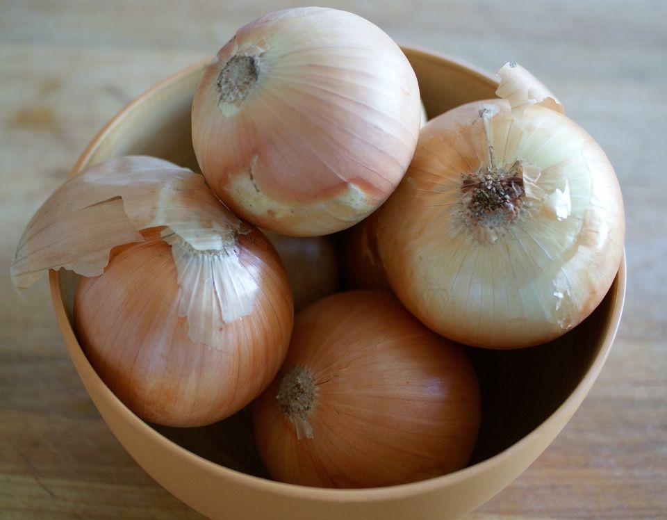 Bowl of onions