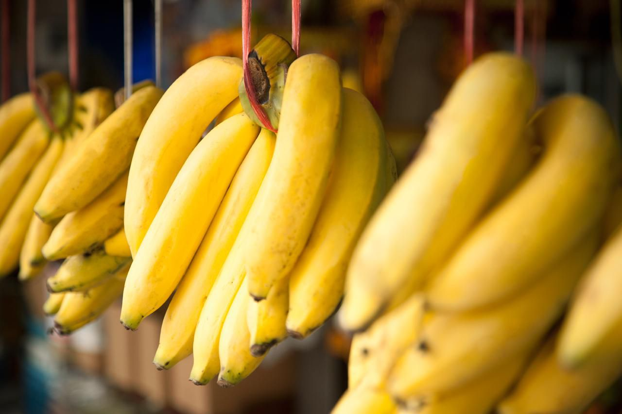 The Rich History of Bananas