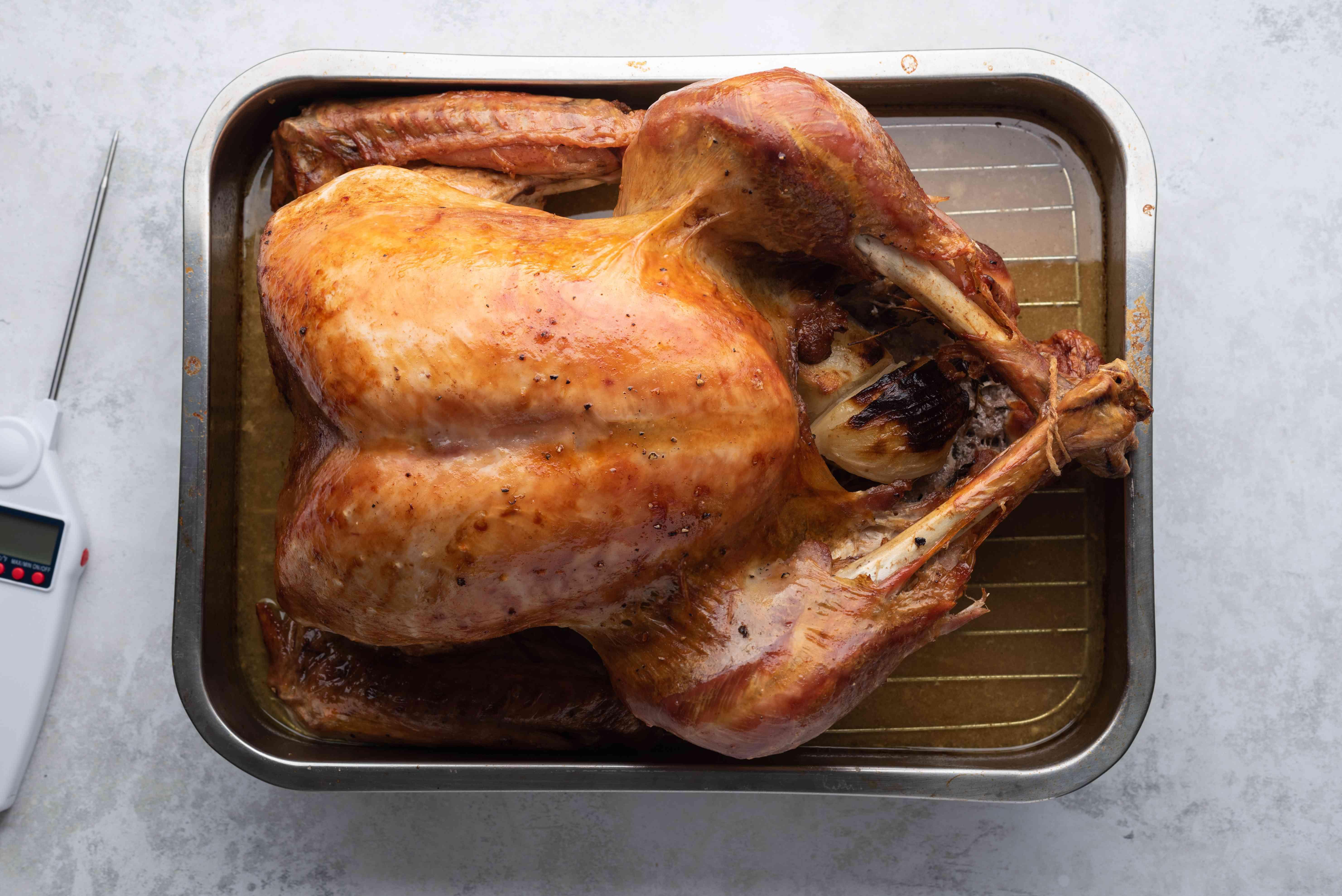 roasted turkey in a roasting pan