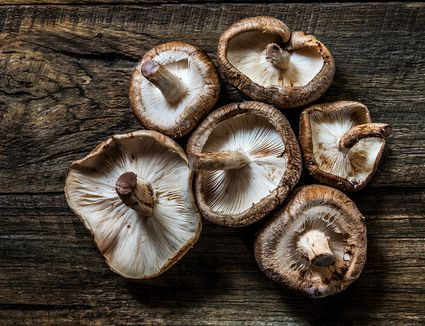 Shiitake mushrooms on a wooden table