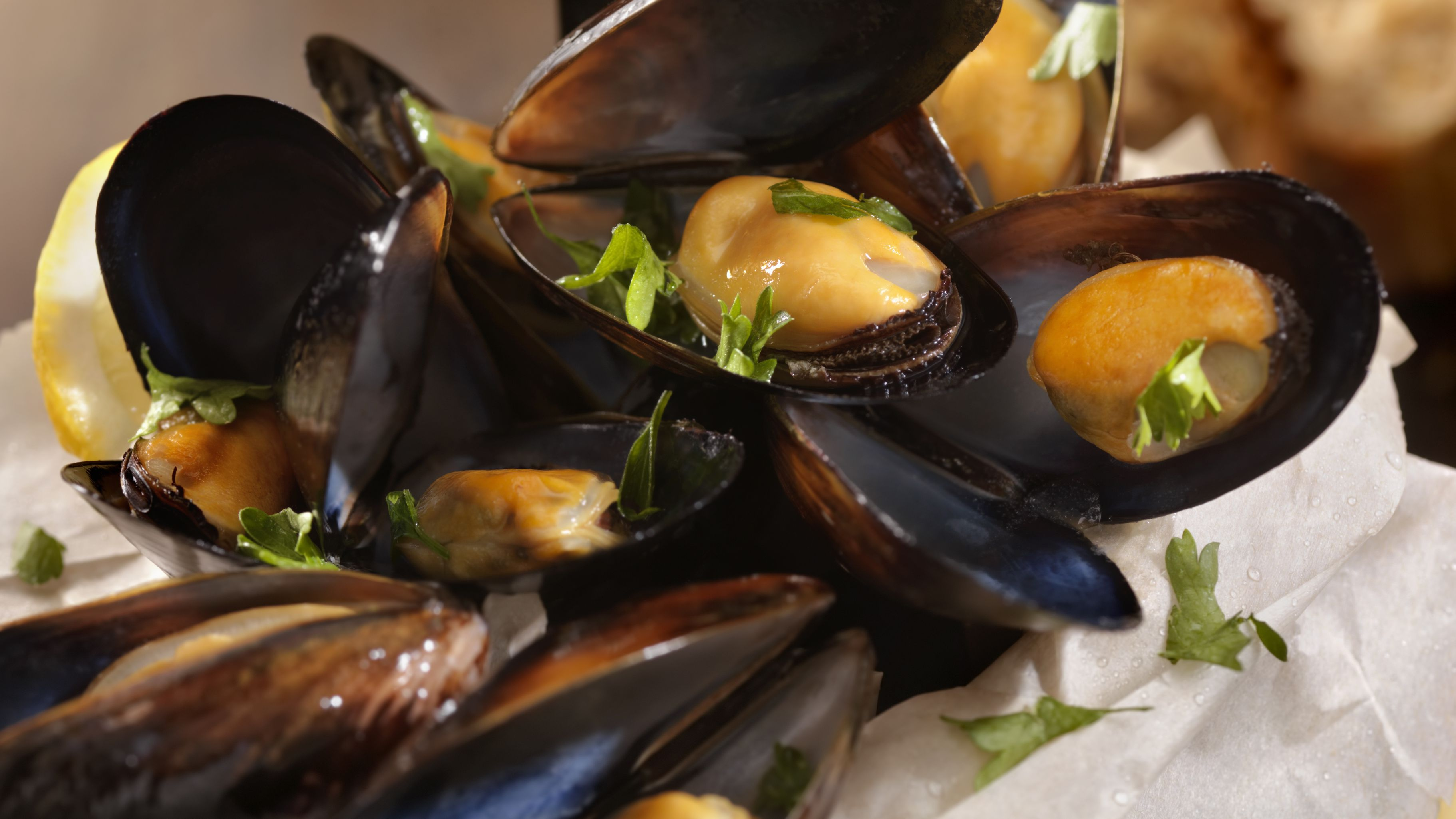 Mussels-different shapes